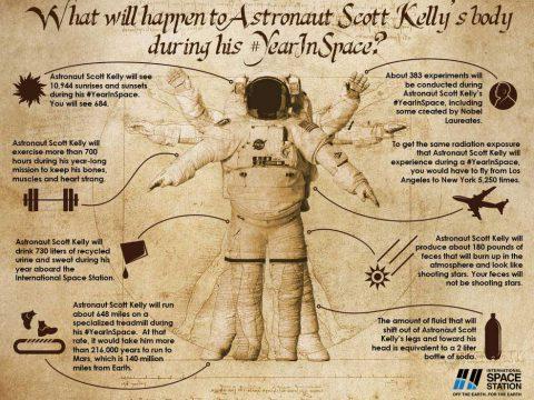 Скотт Келли год в космосе инфографика